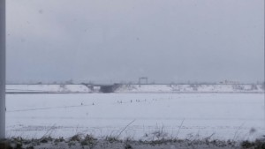 朝は久しぶりに雪模様